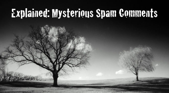 20140329sa-explained-mysterious-spam-comments-672x372